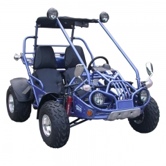 Buggy Off Road Go kart in vendita