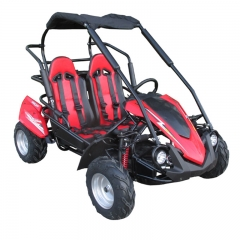 Racing Buggy Off Road per i bambini