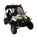 UTV Side By Side Off Road 300