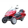 300cc Gas Scooter Trike a 3 ruote